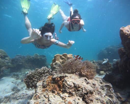 Two people snorkelling underwater