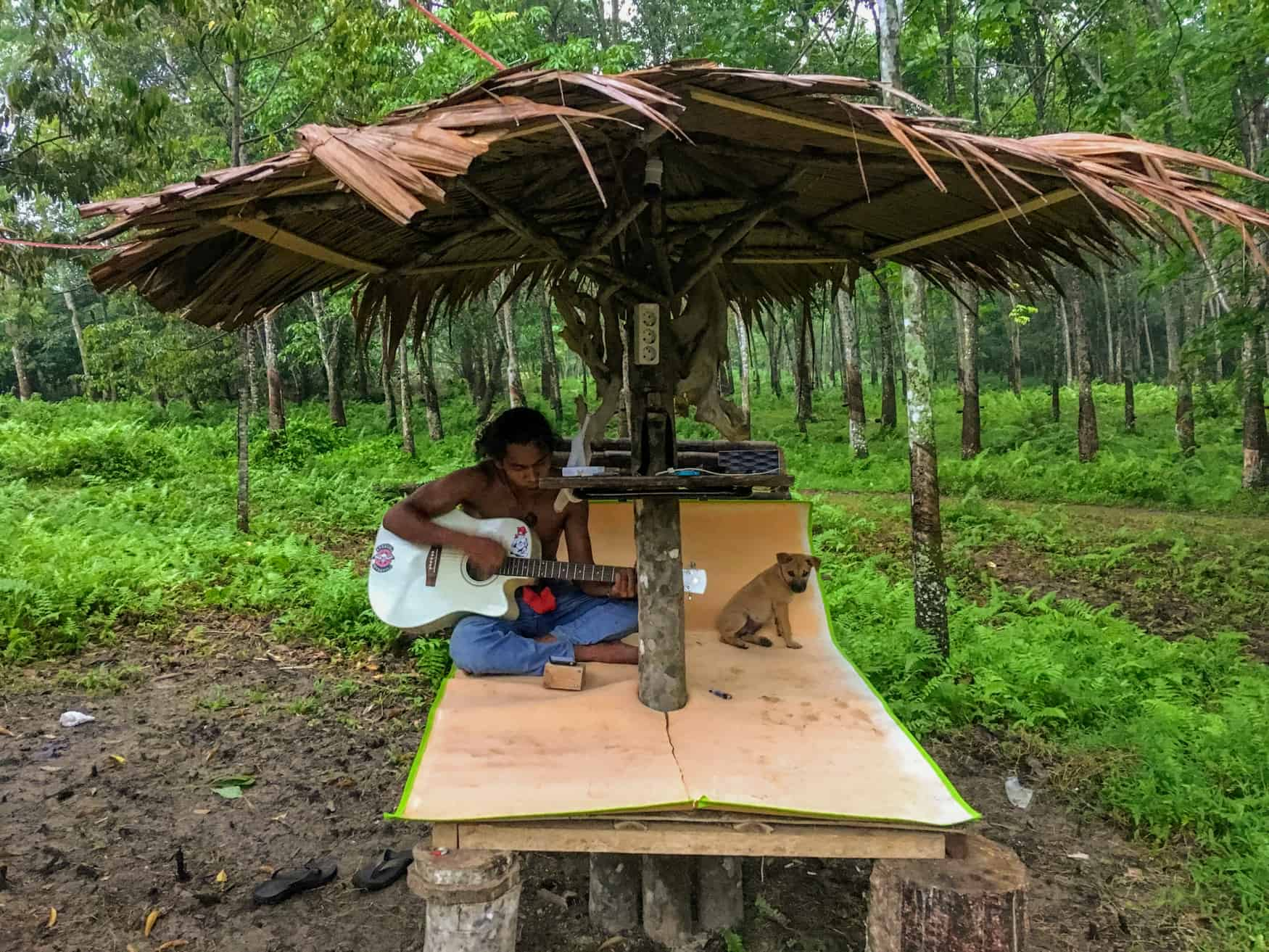 Indonesian man plays guitar under lean-to.
