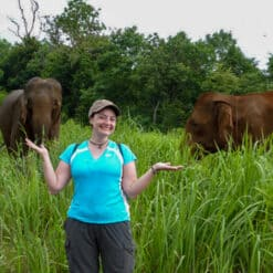 Visitor poses in front of elephants