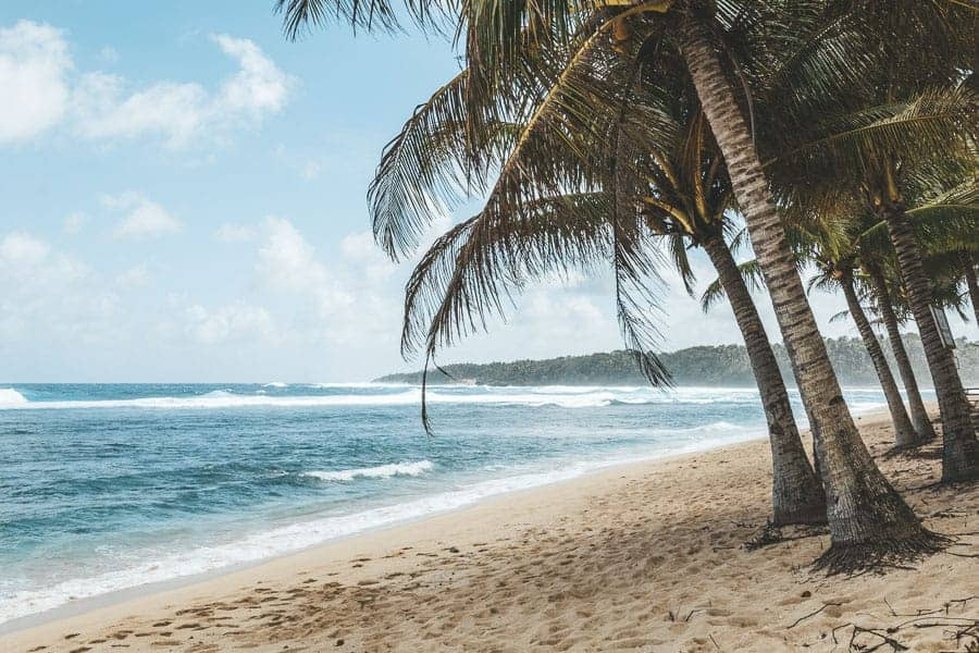 Palm trees and surf on the beach on Siargao Island