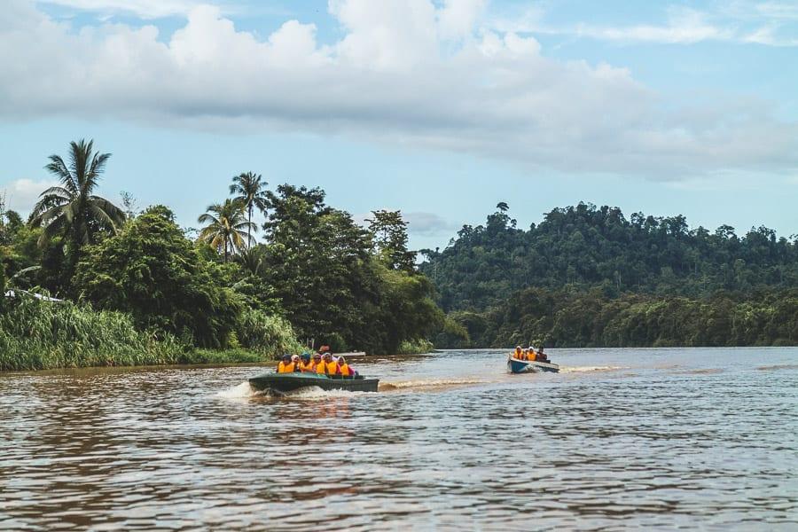 Two tourist boats on the Kinabatangan river, Borneo