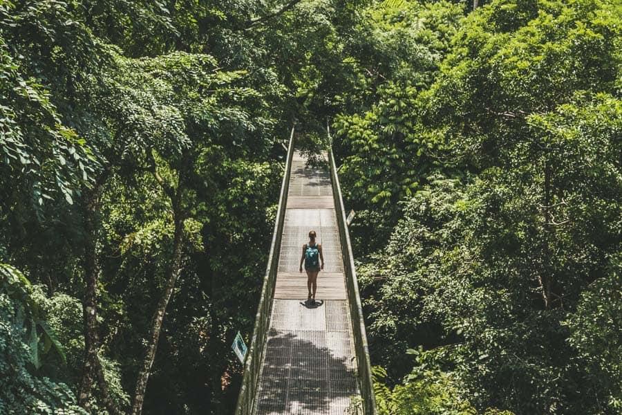 Girl walking along a bridge walkway through a rainforest