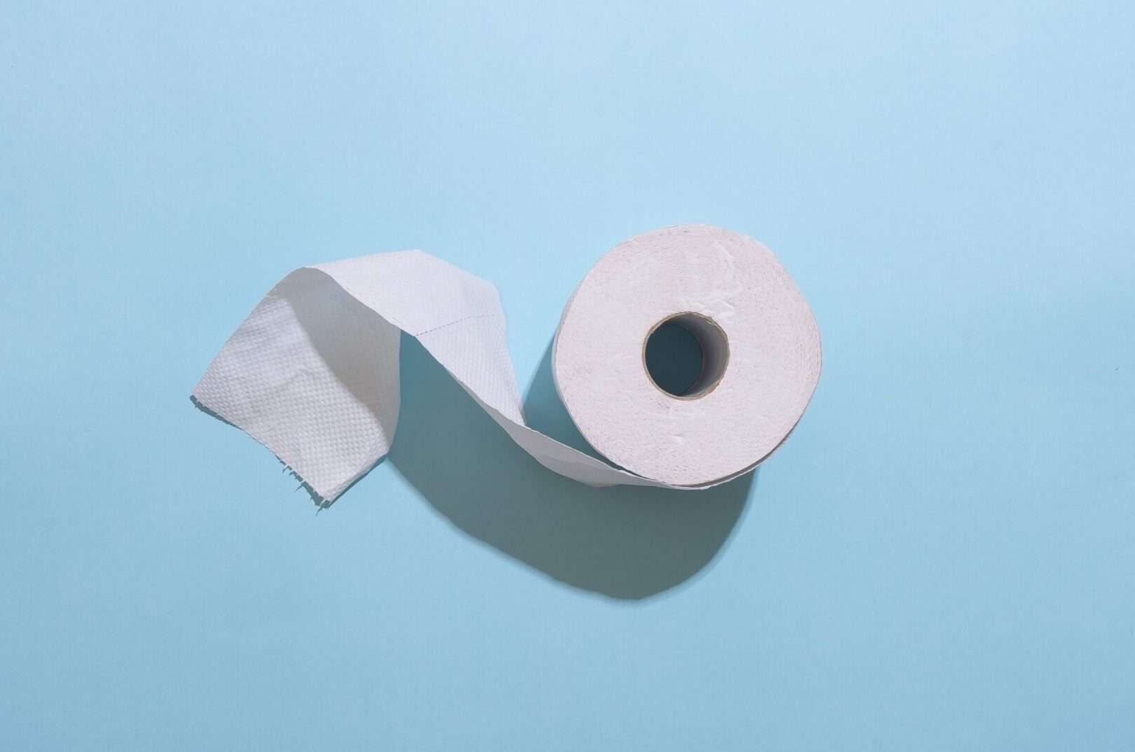 Asian Travel Inspired Toilet Paper Alternatives