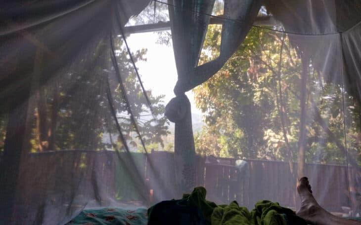 Relaxing in mosquito net