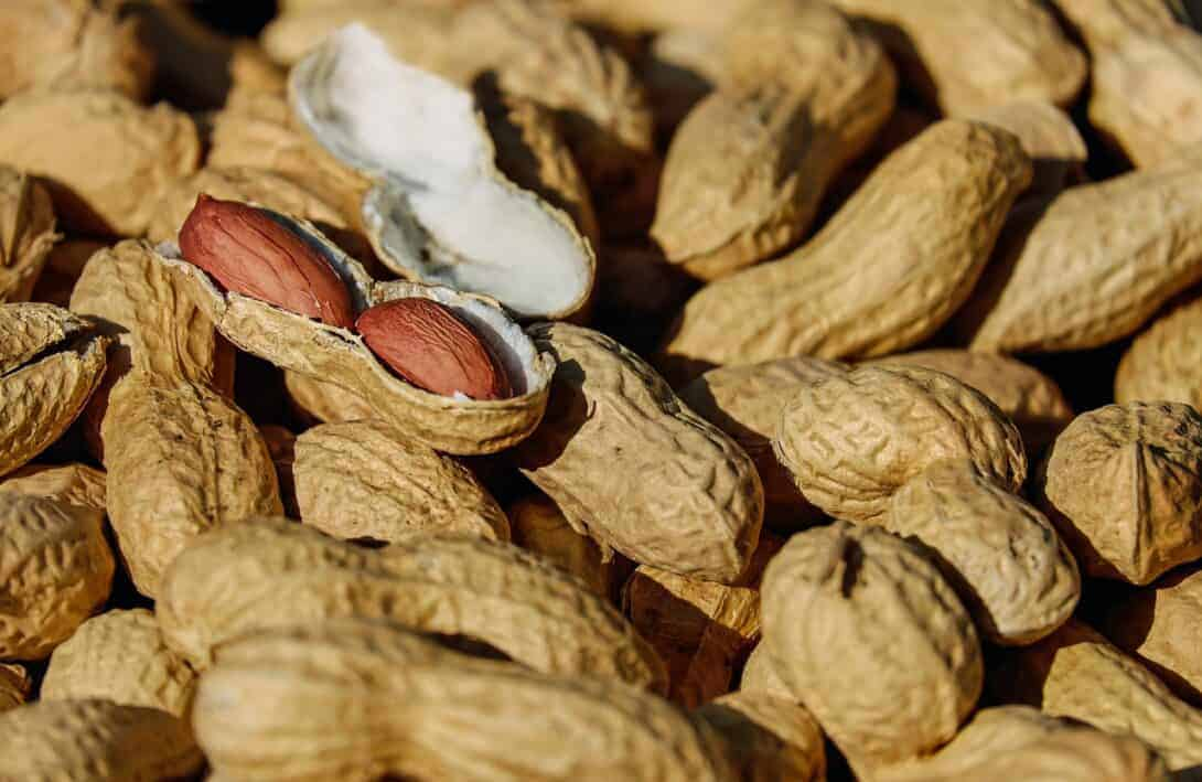Surviving Southeast Asia with a Peanut Allergy
